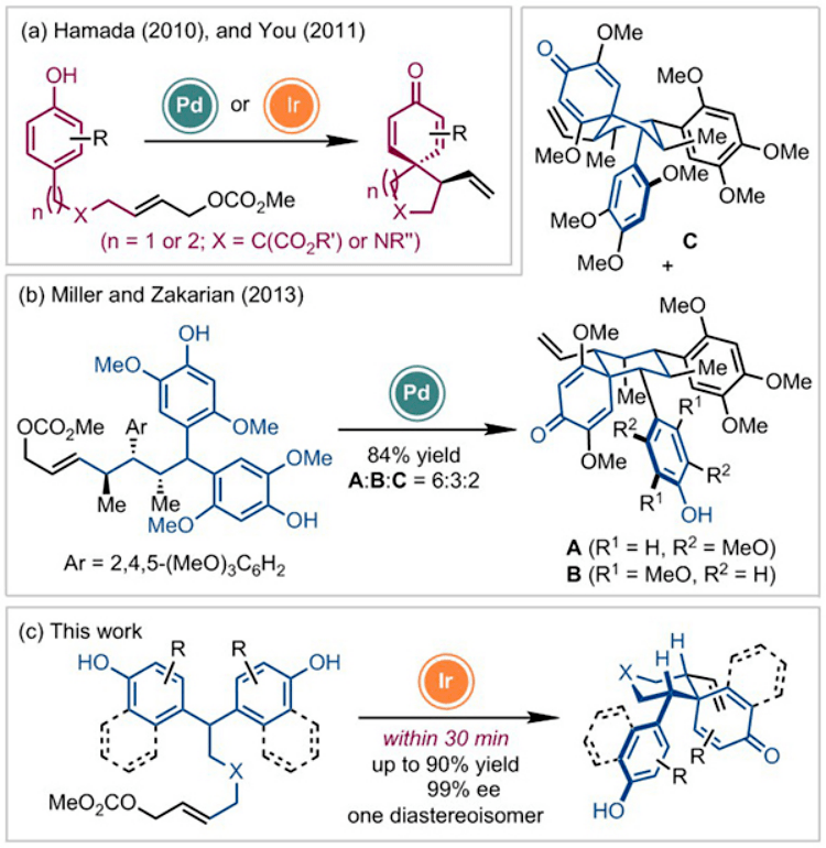 上海有机所在基于去对称化策略的去芳构化反应研究领域取得进展