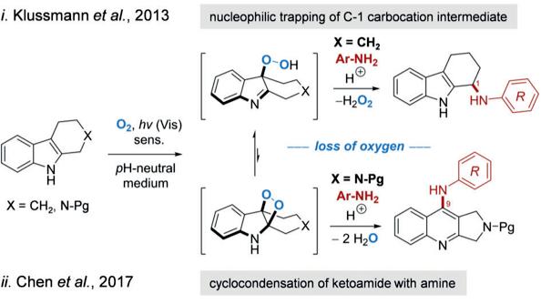 【Angew. Chem. Int. Ed.】可见光/氧合串联反应实现C,N-二酰亚胺的合成